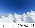 山形蔵王_最盛期の樹氷群 29498114