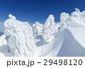 山形蔵王_最盛期の樹氷群 29498120