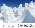 山形蔵王_最盛期の樹氷群 29498121