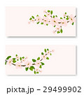 two banners with pink ornamental Sakura flowers 29499902