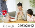 母の日 母親 家族の写真 29502042