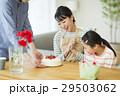 母の日 母親 家族の写真 29503062