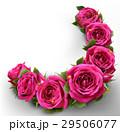 バラ お花 フラワーのイラスト 29506077