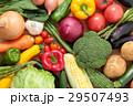 野菜 集合 俯瞰 29507493