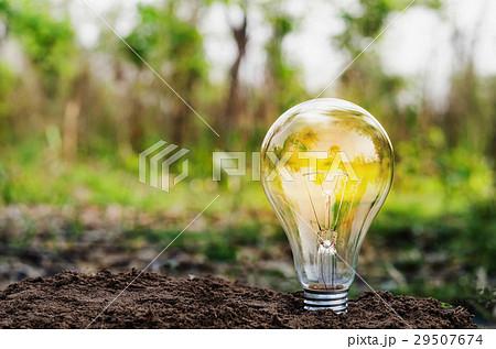Eco concept - Lightbulb on dirt  natureの写真素材 [29507674] - PIXTA