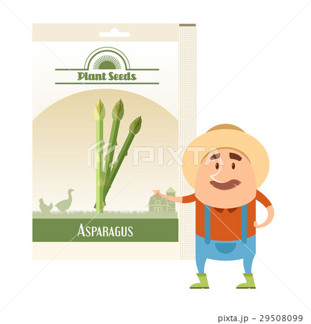 Pack of asparagus seeds iconのイラスト素材 [29508099] - PIXTA