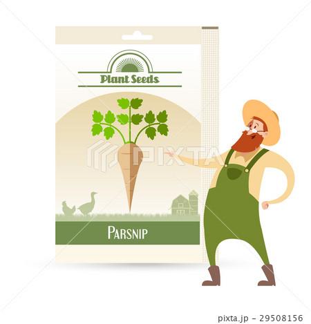 Pack of Parsnip seeds iconのイラスト素材 [29508156] - PIXTA
