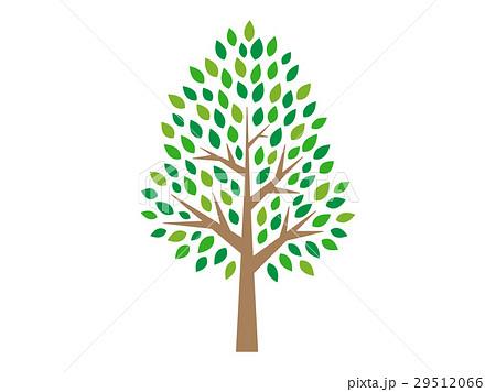木のイラストのイラスト素材 29512066 Pixta