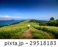 川内峠 峠 高原の写真 29518183