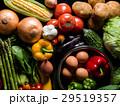 野菜・黒バック 29519357