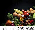 野菜・黒バック 29519360