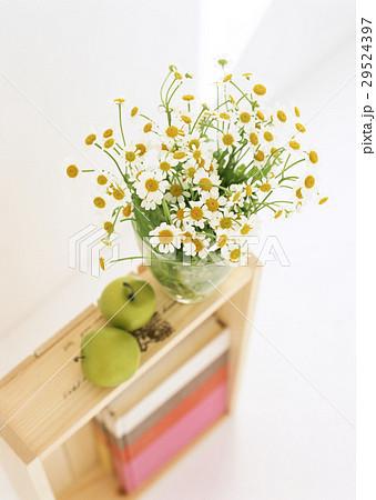 ナツシロギクと青リンゴ 29524397