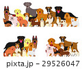 いろいろな犬たちのグループ 29526047