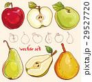 フルーツ 果物 ベクターのイラスト 29527720