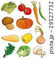 Vector vegetables set. Food ingredients 29527732