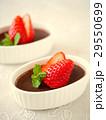 プリン ココアプリン 洋菓子の写真 29550699
