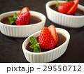 プリン ココアプリン 洋菓子の写真 29550712