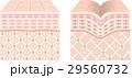 肌 断面図 断面のイラスト 29560732