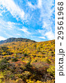 安達太良山 秋 紅葉の写真 29561968