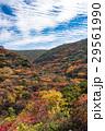 安達太良山 紅葉 秋の写真 29561990