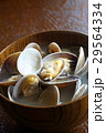 あさりの味噌汁 味噌汁 和食の写真 29564334