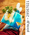 コンセプト 概念 ビーチのイラスト 29567021