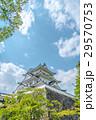 伊賀上野城 城 天守閣の写真 29570753