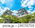 伊賀上野城 城 天守閣の写真 29570759
