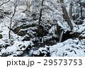 滝 ウィンター ウインターの写真 29573753