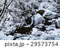 滝 ウィンター ウインターの写真 29573754
