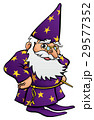 Wizard Cartoon Character 29577352