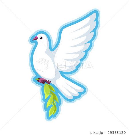 White dove of peace bears olive branch 29583120