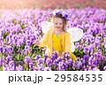 フェアリー 妖精 女の子の写真 29584535