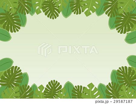 南国の植物・葉っぱのフレーム・コピースペース・背景素材 ベクター 長方形 29587187