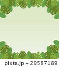 南国の植物・葉っぱのフレーム・コピースペース・背景素材 ベクター 正方形 29587189