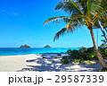 ハワイ ラニカイビーチ 29587339
