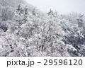 雪景色 29596120