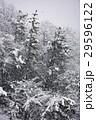 雪景色 29596122