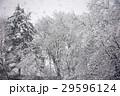 雪景色 29596124