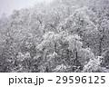 雪景色 29596125