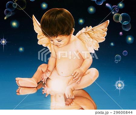 舞い降りた天使 29600844