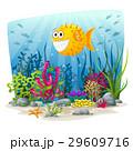 水中 海 景色のイラスト 29609716