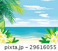 南国のビーチ イラスト 29616055