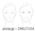 女性の顔 ライン 29617154