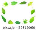 葉っぱのフレーム 29619060