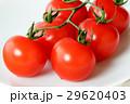 トマト ミニトマト プチトマトの写真 29620403