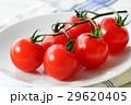 トマト 29620405