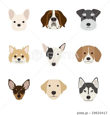 犬の顔セットのイラスト素材 29620417 Pixta