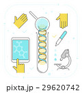 Process of dna research. Contour vector concept 29620742