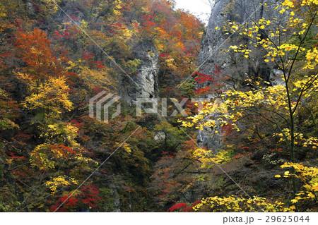 11月 紅葉の鳴子峡 東北の秋 29625044